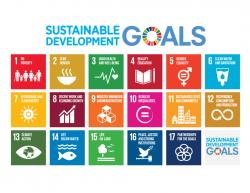 Volunteering Auckland Role in the UN Sustainable Development Goals