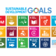 Volunteering Auckland Role in the UN Sustainable Development Goals