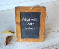 Article image: Learning Opportunities 2019