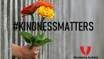 Article image: A Dose of Kiwi Kindness