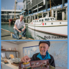 For the love of the Sea - 25 years of Volunteering